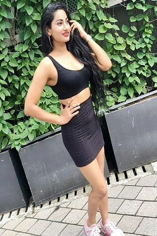 escorts agency in Chandigarh